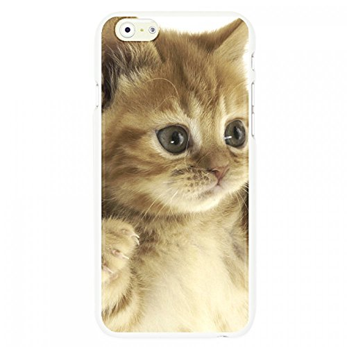 OnlineBestDigital - Animal Pattern Hardback Case / Housse pour Apple iPhone 6 / 6S (4.7 inch)Smartphone - Tiger Kitty cat