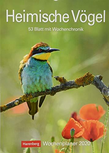 Heimische Vögel 2020 25x35,5cm