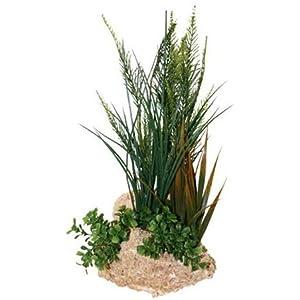 North American Pet Kalktuff Boden mit 38,1cm Pflanze
