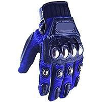 ZHJBD Equipo de Proteccion/Guantes Impermeables para Motocicleta Guantes de Invierno para Montar en frío y Caliente (Color : Blue, Size : L)