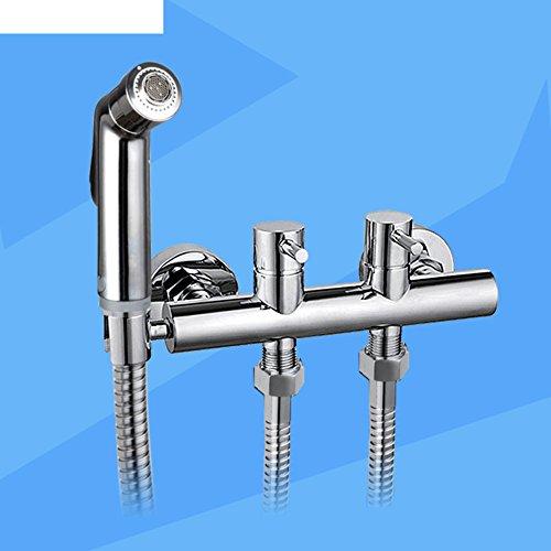 WP Tout le cuivre double Kit bidet entrée/Mural multi-fonctions de mélange bidet pistolet à eau