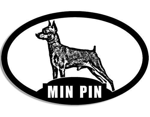 Oval min Pin Pinscher miniatura de silueta adhesivo (perro raza)