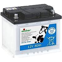 Aufbewahrungsbox Antidiebstahlpfahl für Weidezaun Gerät Elektrozaungerät Pferd