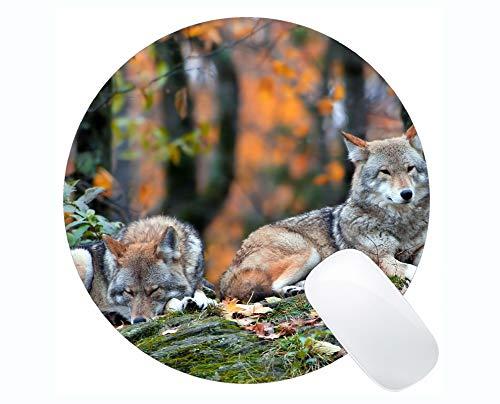 Runde Mauspad, ruhendes Tier Wald Wolf Herbst Mauspads für Computer Laptop 230 x 230 mm