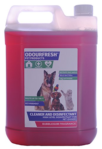 Odourfresh Bubblegum Pet Disinfectant – High Level Disinfectant, Kennel Cleaner & Deodoriser