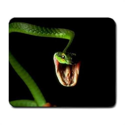 Biting Attacking Snake Reptile Lover Mouse Mat Pad Mousepad