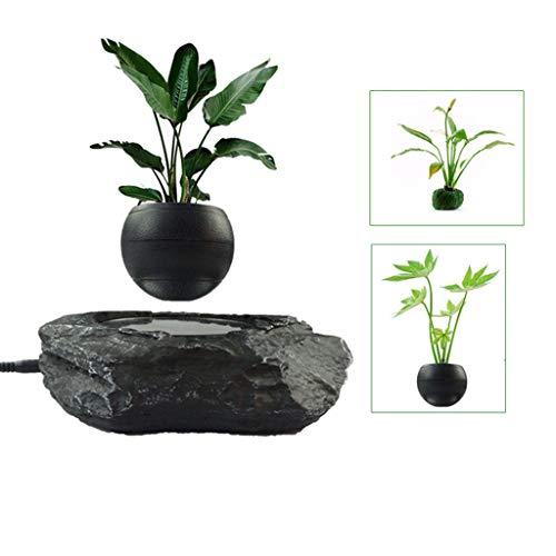 pot de plante bonsaï en lévitation magnétique noir flottant en suspension - plante en lévitation et tournante - objets decoration bureau - decoration cocooning - decoration salon/maison/chambre