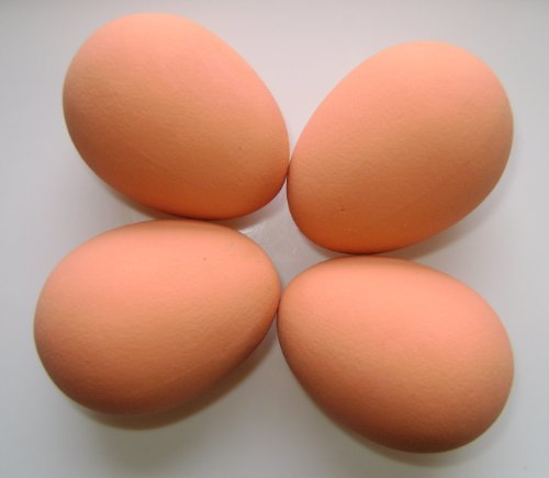 Durham Hens Rubber Nest Eggs x 4 (Hen Size) 1