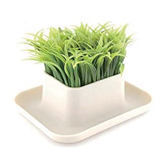 Grass Pen Holder Pot – Office Accessory
