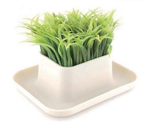 Stifteköcher Gras–Bürozubehör