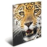 HERMA Sammelmappe A3 PP 'Leopard'