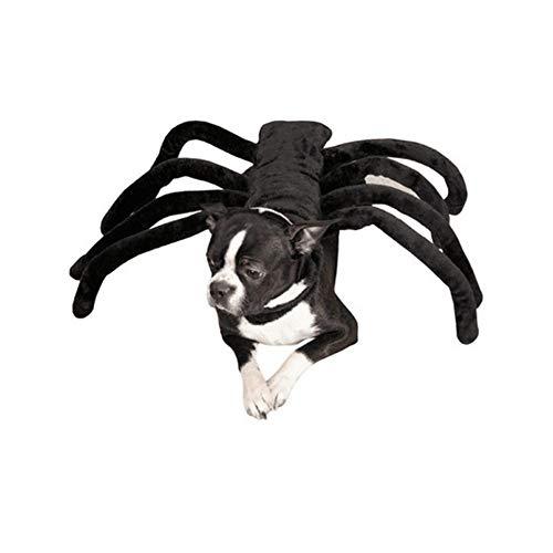 Kleiner Kostüm Fledermaus Hunde - Li Hua Hunde-Kostüm für kleine Hunde und Katzen, mit Fledermaus-Motiv, für Halloween, Weihnachten, Geburtstage, Fotoshow und Spieldaten, Halsband