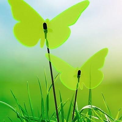 Elliot Lichtzauber 1019450 Sonnenfänger-Schmetterling , 16 cm, grün von Elliot bei Du und dein Garten