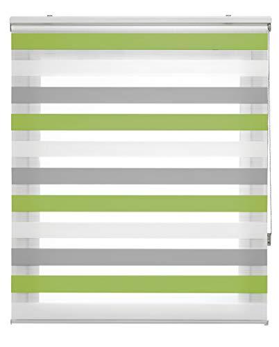 Blindecor Lira Estor Enrollable Doble Tejido, Noche y día,Tricolor 160 x 180 cm, Color Gris Pistacho, Poliéster