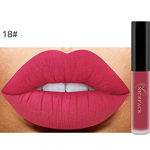 Bluestercool 26 Couleurs Rouge à Lèvres Liquide Mat Waterproof Hydratant Brillant Maquillage à Lèvres (9.8*1.5*1.5, 18#)