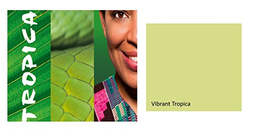 Alpina Colorful World Innenfarbe, 2,5 L. Vibrant Tropica, helles Frühlingsgrün, matt