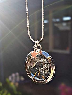 Pissenlit étoile médaillon colllier chaîne Argent Sterling 925 - magnétique flottante verre breloque étoile d'argent douche nuptiale, anniversaire mariage la sympathie avec BOITE CADEAU