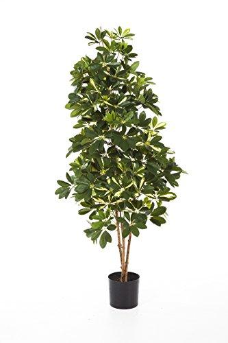 artplants Kunstpflanze Schefflera Premium, getopft, 1420 Blätter, grün-weiß, 170 cm – Künstliche Schefflera