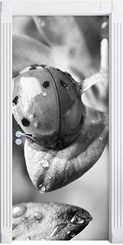 Monocrome, Kleiner Marienkäfer auf zarter Blüte als Türtapete, Format: 200x90cm, Türbild, Türaufkleber, Tür Deko, Türsticker