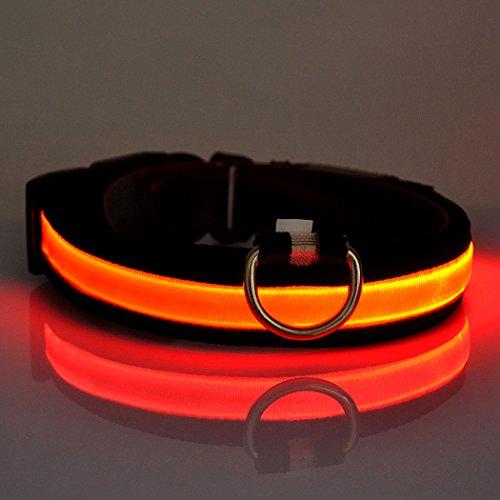Easylifer LED Halsband Hund Sicherheit Blinkt Leuchthalsband für Hunde, Katzen(Rot, XL)