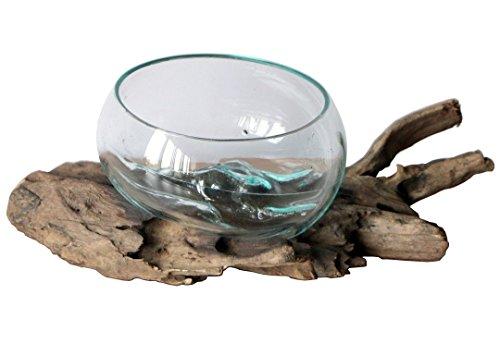 Geschenk Deko Gamal Wurzelholz Glas Ø 16-18 cm Wurzel Holz Teakholz Vase Schale M