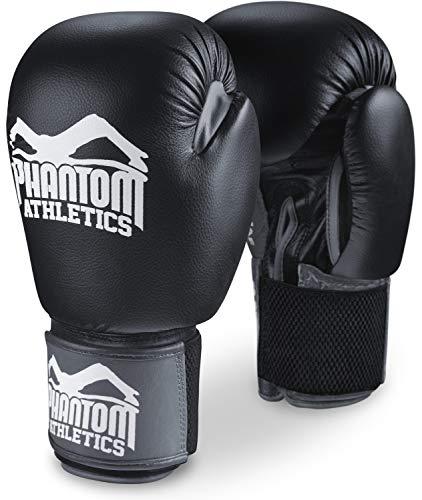 Phantom Athletics Boxhandschuhe Ultra | Profi Handschuhe für Kampfsport, Boxen, Kickboxen, Muay Thai mit elastischem Klettverschluss (10 oz)