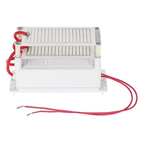 Anself - AC220V 10g Generador de Ozono Portátil Doble Integrado Placa de Cerámica, Accesorio de Ozonizador Purificador de Aire