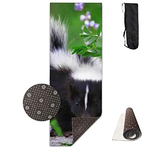 HiExotic Matte Yoga Mat Eco-Friendly Anti Slip Baby Skunks As Pets Mat Carrying Strap & Bag Non-Toxic Printedfor Exercise,Yoga and Pilates 71 X 24 ()