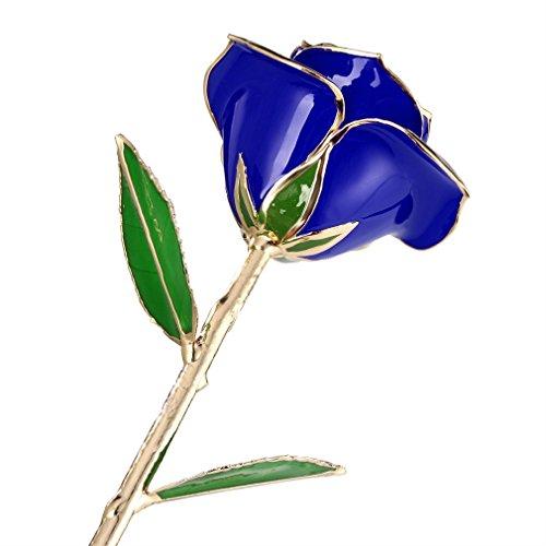 yks-rosa-banada-en-oro-de-24-k-mejor-regalo-para-dia-de-san-valentin-azul