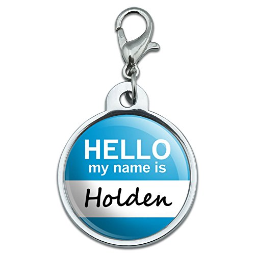 chrome-plated-metal-small-pet-id-dog-cat-tag-hello-my-name-is-gi-is-holden