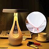 SEJNGF Miroir De Maquillage Deux-en-Un Chargeant Un Cadeau Coloré en Forme De Coeur Miroir Lumière Nuit Lumière Saint-Valentin,Pink-22 * 10.7 * 32.8CM
