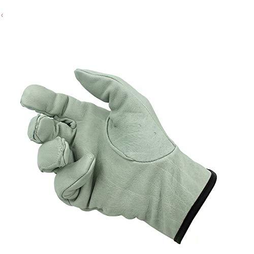 Unbekannt Hitzebeständiger hitzebeständiger Schutzhandschuh und hitzebeständige Matte für Haarglätter/Wands Zangen grau - Haarglätter Wand