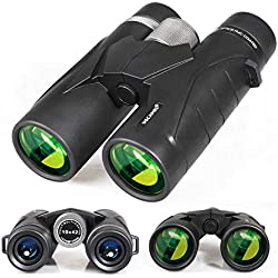 Jumelles 8x42 pour Adultes, Jumelles compactes Professionnelles HD pour l'observation des Oiseaux, Voyages, Observation des étoiles, Camping, Concerts, visites touristiques Noir