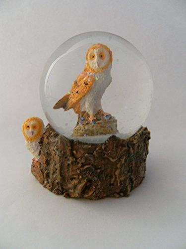 Eule Schneekugeln (Glitzerkugel Eule, Schleiereule Schneekugel Tier Tiere Vogel Vögel Schneekugeln Eulen)