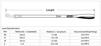 Blueberry Pet Leinen Für Hunde 2 Cm By 150 Cm Länge 3m Reflektierende Strapazierfähige Hundeleine In Neutrales Grau, M 5