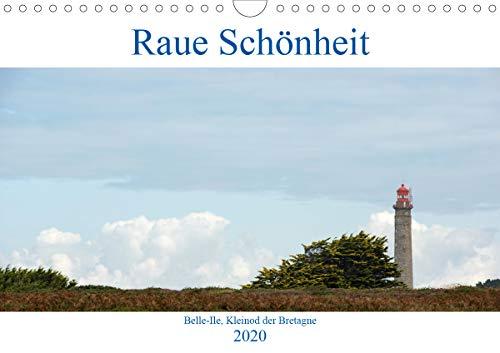 Raue Schönheit, Belle Ile - Perle der Bretagne (Wandkalender 2020 DIN A4 quer)