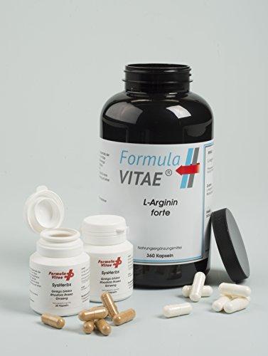 Innovation!!! L-Arginin - HOCHDOSIERT + Rhodiola, Ginkgo und Ginseng für eine optimale Durchblutung - optimaler Muskelaufbau und Stärkung der Libido - Mehr Energie und Ausdauer