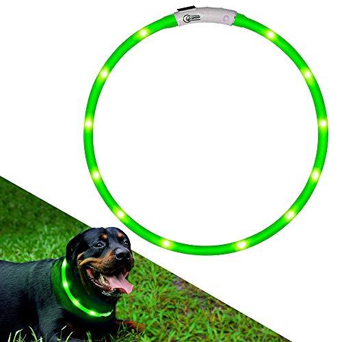 LED Hundehalsband, Hunde Leuchthalsband Halsband, USB Aufladbar,Länge Kann Eingestellt Werden,Green