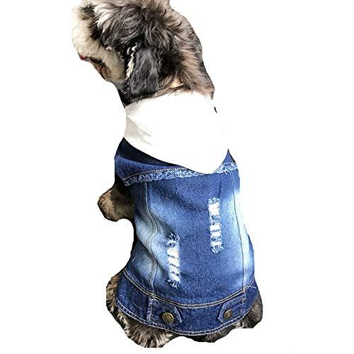 AMURAO Winter Hund Kleidung Mantel, Hund Französisch Bulldog Jeansjacke Jeans mit Kapuze Weste für Mops Katze Haustier - Gans Hund Kostüm