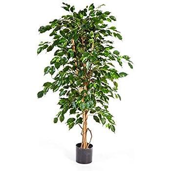 Arbuste Artificiel 80cm Faux ficus Vert artplants.de Ficus Exotica Artificiel Yuma