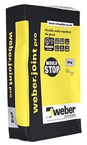 Weber conjointe Pro Coulis Gris Argent 5 kg