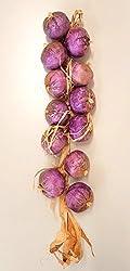Zwiebel Knoblauch Deko-gemüse Für Die Küche, Dekoration Kunststoff Neu Ovp Verschiedene Variante (Zwiebel Violett)