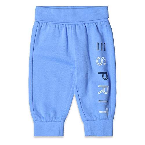 ESPRIT KIDS Baby-Jungen Knit Pants Hose, Blau (Azur Blue 443), Herstellergröße: 92 Kind Knit Pant