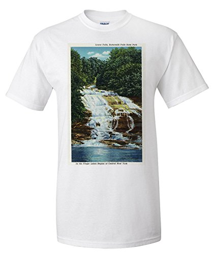 ithaca-new-york-buttermilk-farms-state-park-lower-falls-view-premium-t-shirt