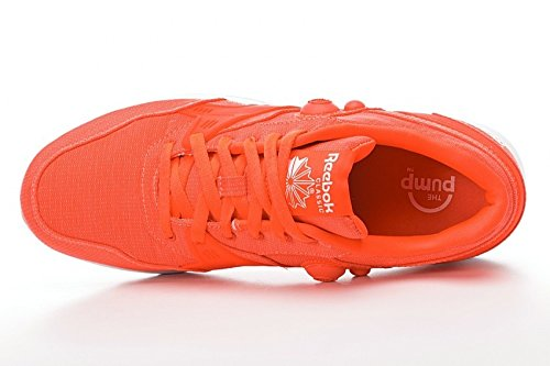 Reebok Pump Running Dual Tech (orange) Orange