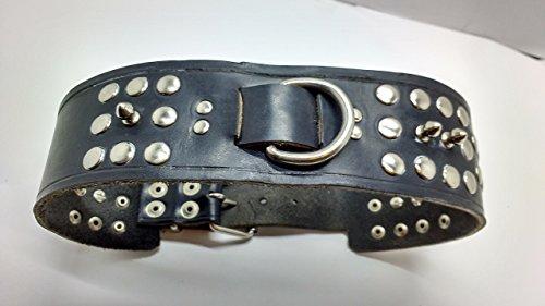 collar-perro-tyson