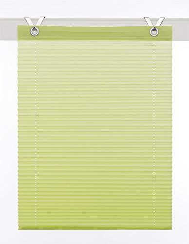 Estor plisado Olbia vert ojales montaje sencillo sin taladrar ca. 50/125 cm