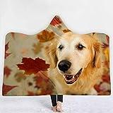 QR-tapestry Nette Haustier-Reihe Goldener Retriever-Hundemuster-mit Kapuze Kappe-Decke Hauptdecken-Decke Hood-Decke, die Decke der Decke der Kinder, 150 * 200cm Nickerchen hält