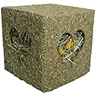 Rosewood Naturals I Love Hay Forage Cube Treat and Toy for Rabbits/Guinea Pigs/Chinchillas and Degus, Large