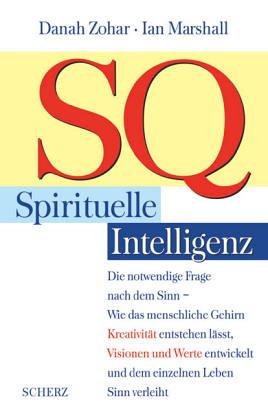 SQ, Spirituelle Intelligenz